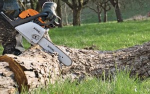 brush-cutting-services-okotoks-calgary-turner-valley-acreages